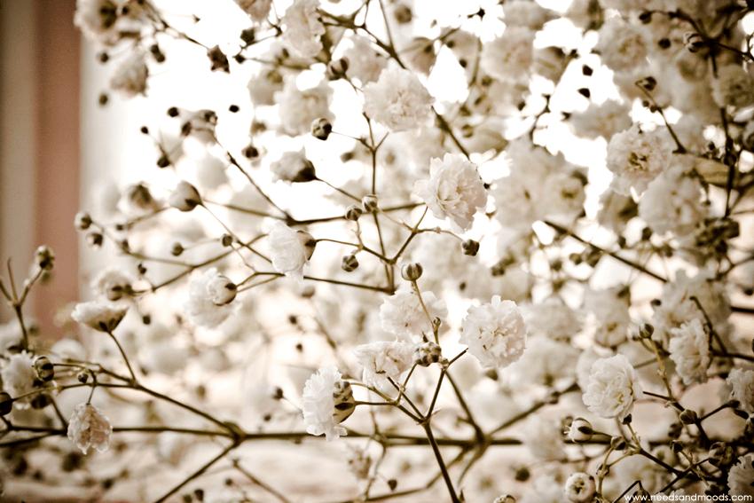 Gypsophile Perfecta bouquet
