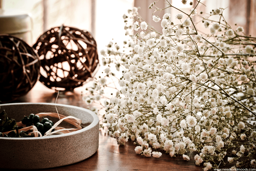 Gypsophile Perfecta france fleurs