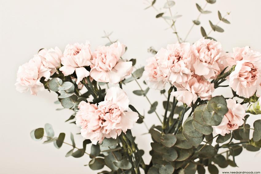 bouquet oeillet eucalyptus