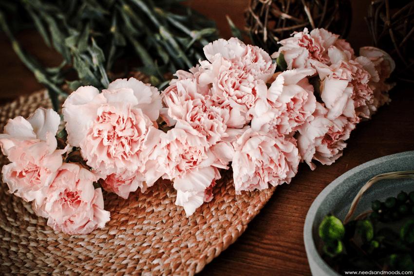 france fleurs Oeillet rose