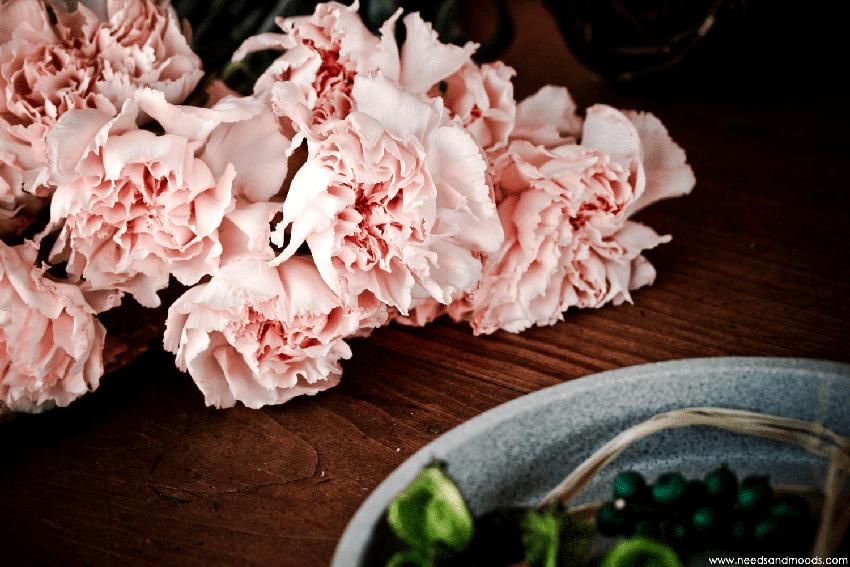 france fleurs Oeillet sims rose pâle