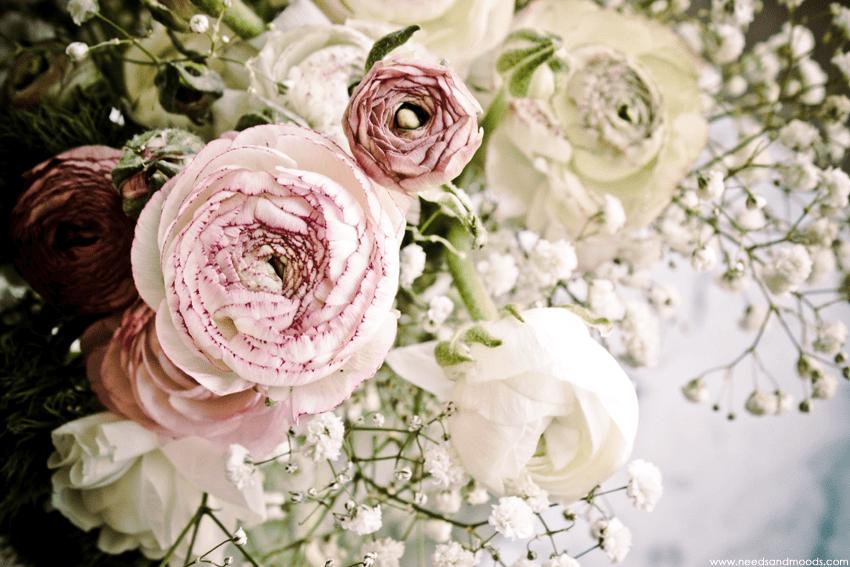 france fleurs renoncules roses