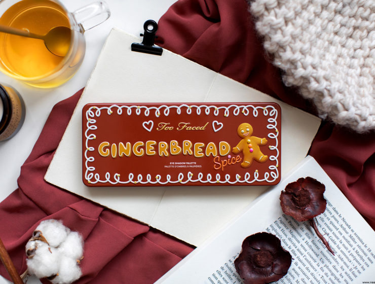 too faced gingerbread spice palette avis
