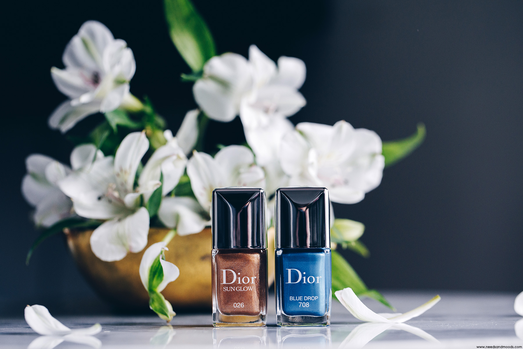 dior vernis ongles wild earth 2019